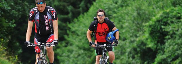 Mountain Bike - Disposição