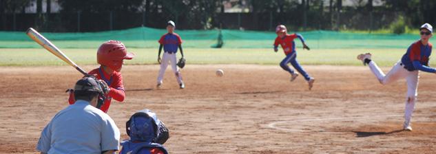XXVI Campeonato Brasil.de Baseball Inter Seleções Infanitl - Disposição