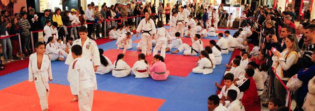 V Copa OrtoPlus Sistema Judoca - Disposição
