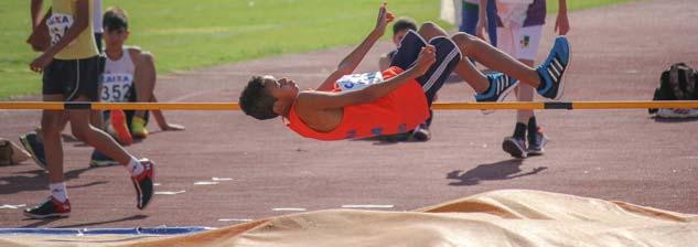 16º Campeonato Paranaense de Atletismo Mirim - Disposição